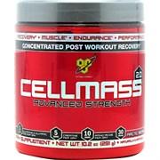 BSN CELLMASS 2.0 (291Г.)